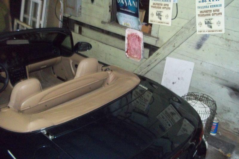 trunk deck
